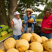 Kenneth Scott, left, talks with Dale Crews, right, and Crews' grandson Lucas Harris at Crews' watermelon and cantaloupe stand near Sardis, Tennessee. Dale Crews has been selling his crop right from his farm on the honor system with a pot for customers to place money in for about 35 years. Nathan Lambrecht/Journal Communications