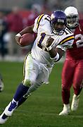 Minnesota Vikings quarterback Daunte Culpepper during 18-17 loss to the Arizona Cardinals at Sun Devil Stadium at Sun Devil Stadium in Tempe, Ariz. on Sunday, Dec. 28, 2003.