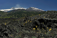 Old lava flow on the eastern part of the Etna volcano, Sicily, Explosion, Stromboli, Etna, Italy