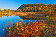 Unamed lake in autumn<br />
