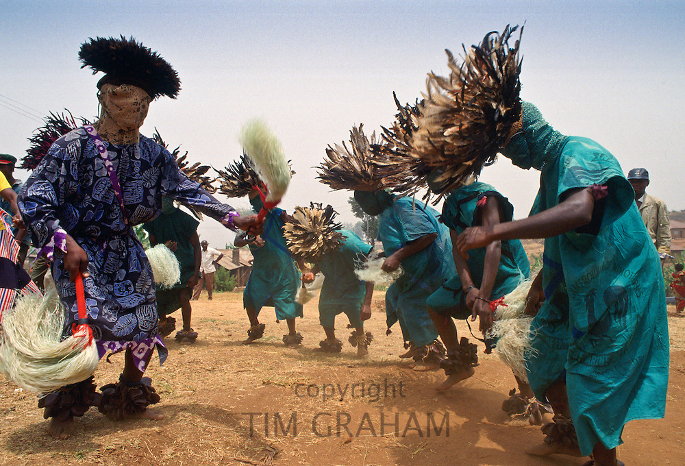 Traditional dance, Bamenda, Cameroon, Africa RESERVED USE - NOT FOR DOWNLOAD -  FOR USE CONTACT TIM GRAHAM