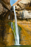 View of Lower Calf Creek Falls, an easy hike from a parking lot. Grand Staircase-Escalante National Monument, near Boulder & Escalante, Utah, USA.