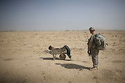 A US Army soldier from Scout Platoon 502 Infantry Regiment, 101st Airborne Division, looks at the body of a suspected Taliban IED emplacer who was killed in a coalition missile strike in Zhari district, Kandahar province, Sunday, Oct. 10, 2010.  The Scouts' mission was to support roadside bomb clearance efforts in the militant stronghold, the latest days-long phase of Operation Dragon Strike. (AP Photo/Rodrigo Abd)