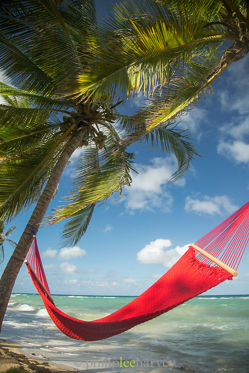 Idyllic landscape with view of hammock on a beach and palm trees, Little Corn Island, Nicaragua