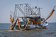 5/24/2010  Shrimp boat being used as a skimmer boat in Barataria Bay, Louisiana, cleaning up oil  from the BP oil spill.