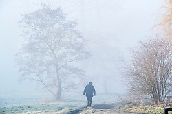 © Licensed to London News Pictures. 14/02/2019. Sidcup.Some winter mist with a cold and frosty start to Valentines day at Footscray Meadows in Sidcup.  Photo credit: Grant Falvey/LNP