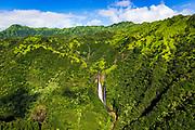 Manawaiopuna Falls (aerial) also known as Jurassic Park Falls, Hanapepe Valley, Kauai, Hawaii USA