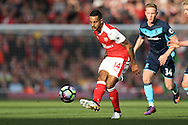 Theo Walcott of Arsenal in action. Premier league match, Arsenal v Middlesbrough at the Emirates Stadium in London on Saturday 22nd October 2016.<br /> pic by John Patrick Fletcher, Andrew Orchard sports photography.