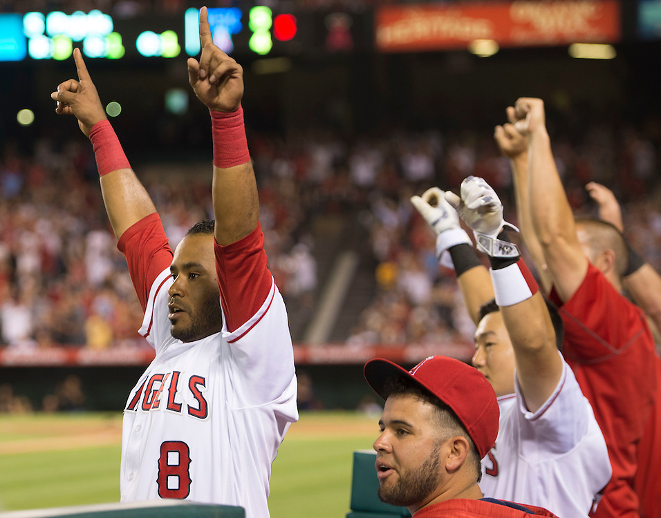 The Angels bench, led by Gregorio Petit, at left, celebrates after Albert Pujols' second three-run home run of the game in the fifth inning at Angel Stadium on Tuesday.<br /> <br /> ///ADDITIONAL INFO:   <br /> <br /> angels.0720.kjs  ---  Photo by KEVIN SULLIVAN / Orange County Register  -- 7/19/16<br /> <br /> The Los Angeles Angels take on the Texas Rangers at Angel Stadium.