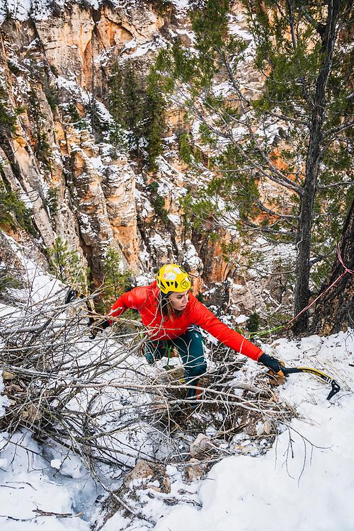 Nikki Smith bush wacks her way off of Bo Beck WI4, Zion National Park.