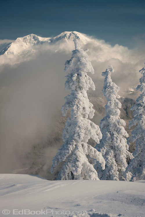 Mount Rainier blanketed in heavy snow is viewed across the Nisqually River Valley from High Hut on the Mount Tahoma Trails in the Washington state Cascade Range USA.