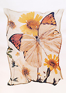 Orange tipped butterfly with wild  flowers - Polaroid lift.