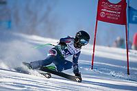 Francis Piche Invitational U12 mens first run with Gunstock Ski Club.  <br /> ©2017 Karen Bobotas Photographer