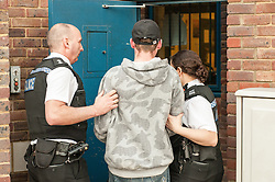 Sussex Police arrest young white male