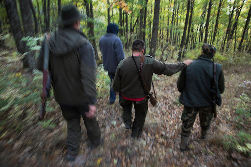 Romanian hunters walking in the forest after a driving hunt for Wild boar (Sus scrofa) in the forest area outside the village of Mehadia, Caras Severin, Romania.