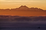A boat cruises Puget Sound as the last light of day illuminates the Olympic Mountains. (Bettina Hansen / The Seattle Times)