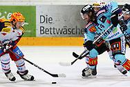 24.03.2011, Rapperswil-Jona, Eishockey NLA Playout, Rapperswil-Jona Lakers - HC Ambri-Piotta, Inti Pestoni (AMB) gegen Lukas Grauwiler (LAK)  (Thomas Oswald/hockeypics)