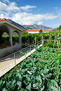 Vegetable gardens and houses, mountains in background. Rascane, Croatia