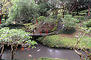 Ornamental pond and gardens of the Byodo-In Buddhist temple in the Valley of the Temples, Oahu, Hawaii. The temple is a replica of the 900-year-old Byodo-In temple in Uji, Japan. Oahu, Hawaii