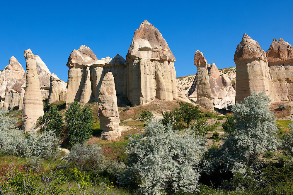 Fairy chimney tuff rock pillars formations of Love Valley, Goreme, Cappadocia, Turkey .<br /> <br /> If you prefer to buy from our ALAMY PHOTO LIBRARY  Collection visit : https://www.alamy.com/portfolio/paul-williams-funkystock/cappadociaturkey.html (TIP refine search - type which part of Cappadocia into the LOWER search box)<br /> <br /> Visit our TURKEY PHOTO COLLECTIONS for more photos to download or buy as wall art prints https://funkystock.photoshelter.com/gallery-collection/3f-Pictures-of-Turkey-Turkey-Photos-Images-Fotos/C0000U.hJWkZxAbg