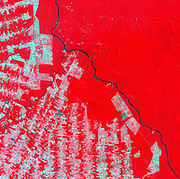 False-colour satellite image of deforestation in Rondonia State, Brazil in 2000.  Pink and brown areas are cleared land, tropical rainforest shows as bright red.  Credit: NASA. South America Science