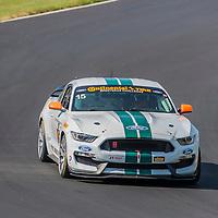 Alton, VA - Aug 26, 2016:  The Multimatic Motorsports Mustang Boss 302R races through the turns at the Oak Tree Grand Prix at Virginia International Raceway in Alton, VA.