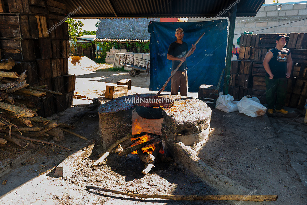 A worker constantly stirs the pot containing the guava-sugar mixture during the process of making Guyaba bars (Florida, Camagüay Province, Cuba).