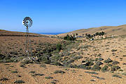Artesian well at Fayagua, between Pajara and La Pared, Fuerteventura, Canary Islands, Spain