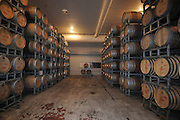 Israel, Golan Heights, winery, Aging barrels