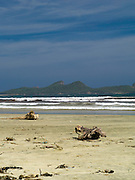 View of the beach at Mason Bay, Stewart Island (Rakiura), New Zealand, with the Ernest Islands in the background