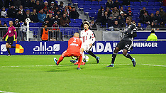 Lyon V Lille - 29 Nov 2017
