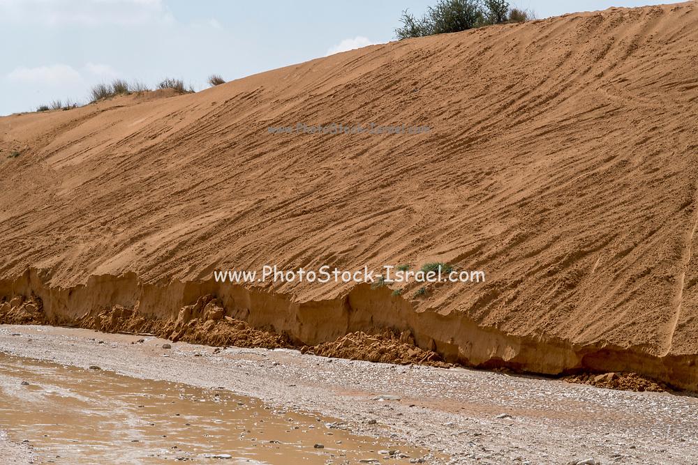 Israel, Negev Desert, a flash flood carries mud and debris in its wake