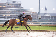 November 1-3, 2018: Breeders' Cup Horse Racing World Championships. West Coast