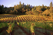 California Wine Country Images