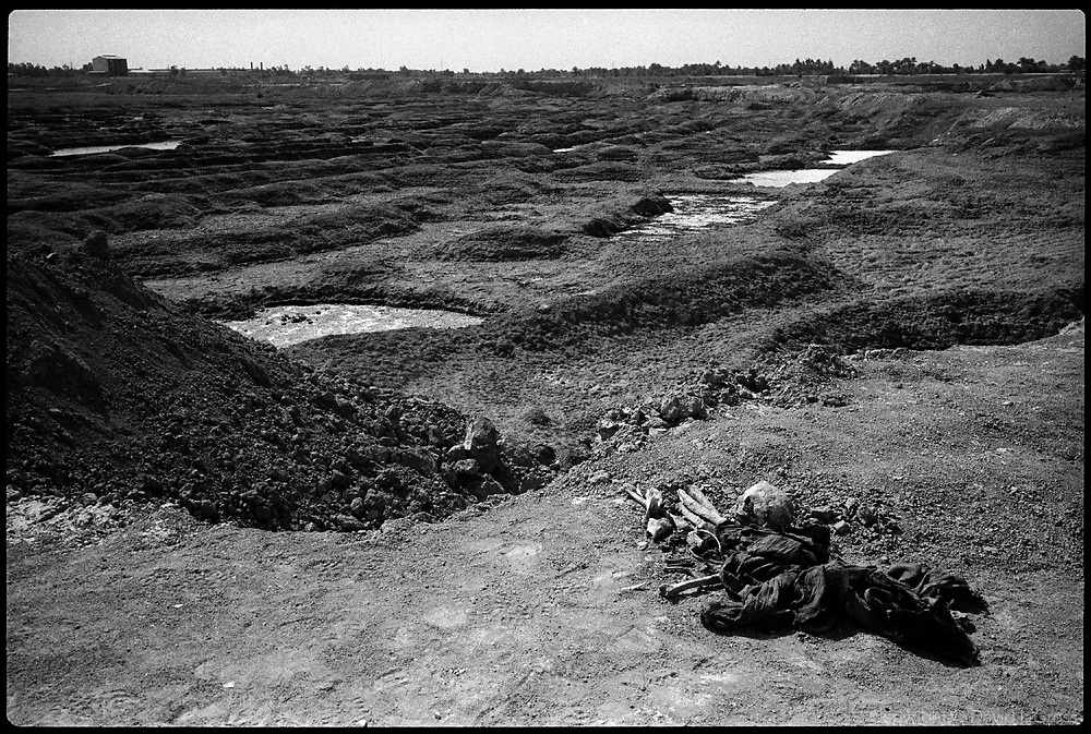 Bones and a skull at a smaller mass grave site near Hillah, Iraq, in a marshy area where one can see the remains of men, women and children. Some remains from the site were recovered by local people and left in piles.