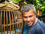 30 JULY 2016 - BANGKOK, THAILAND:  A man listens to one of his songbirds in the Pom Makahan Fort slum. The community is known for fireworks, fighting cocks and bird cages. Residents of the slum have been told they must leave the fort and that their community will be torn down. Mahakan Fort was built in 1783 during the reign of Siamese King Rama I. It was one of 14 fortresses designed to protect Bangkok from foreign invaders. Only of two are remaining, the others have been torn down. A community developed in the fort when people started building houses and moving into it during the reign of King Rama V (1868-1910). The land was expropriated by Bangkok city government in 1992, but the people living in the fort refused to move. In 2004 courts ruled against the residents and said the city could take the land. Eviction notices have been posted in the community and people given until April 30 to leave, but most residents have refused to move. Residents think Bangkok city officials will start evictions around August 15, but there has not been any official word from the city.     PHOTO BY JACK KURTZ