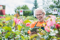 Male gardener checking inventory with digital tablet in garden centre, Augsburg, Bavaria, Germany