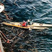 Three weeks aboard the Kong Harald. Hurtigruten, the Coastal Express. Sea kayak going out by the portelone.
