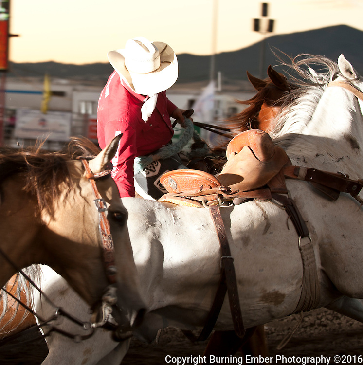 Pickup men at the Last Chance Stampede Helena MT July 29th 2016.  Josh Homer photo.  Photo credit must be given on all uses.  www.burningemberphotography.com