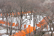 Central Park. New York, New York. United States..February 24th 2005..Art project The Gates by Christo and Jeanne Claude..7503 gates, 16,4 feet high, on 22 miles in Central park, $ 21 millions, 750 employees.