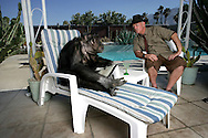"""EXCLUSIVE 24th June 2008, Palm Springs, California.  Filmmaker and campaign manager Matthew Devlen, of the """"Go Cheeta"""" campaign, who are trying to get Cheeta the 76-year-old Chimp a star on the Hollywood Walk of Fame. Cheeta was the star of many Hollywood Tarzan films of the 1930s and 1940s,  PHOTO © JOHN CHAPPLE / www.johnchapple.com<br /> tel: +1-310-570-9100"""