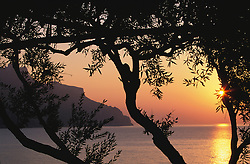 Europe, Italy, Salerno, Amalfi Coast, sunset viewed through trellis over the Tyrrhenian Sea