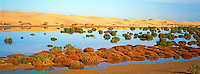 Maroc. Grand Sud. Lagune de Khnifiss. Cote Atlantique. Ancien Sahara espagnol. // Morocco. South Morocco. Khnifiss laguna. Atlantic coast. Former Spanish Sahara.
