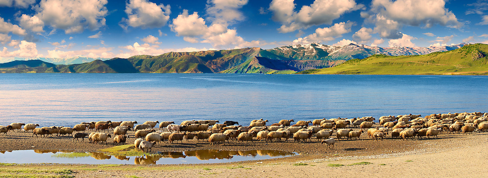 Shoreline of Lake Van, Turkey 1 .<br /> <br /> If you prefer to buy from our ALAMY PHOTO LIBRARY  Collection visit : https://www.alamy.com/portfolio/paul-williams-funkystock/lakevanturkey.html<br /> <br /> Visit our TURKEY PHOTO COLLECTIONS for more photos to download or buy as wall art prints https://funkystock.photoshelter.com/gallery-collection/3f-Pictures-of-Turkey-Turkey-Photos-Images-Fotos/C0000U.hJWkZxAbg