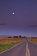 Evening moonrise over road in spring, in the Carneros Region, Napa County, California