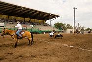 Will James Roundup, Ranch Rodeo, Three Man Cow Doctoring, Hardin, Montana, Ed Verhelst, KC Verhelst, Marty He Does It
