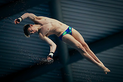 Matty Lee from City of Leeds Diving Club competes in the Mens 10m Platform Final going on to win the Silver medal - Mandatory byline: Rogan Thomson/JMP - 12/06/2016 - DIVING - Ponds Forge - Sheffield, England - British Diving Championships 2016 Day 3.