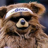 09 December 2015: Utah Jazz mascot  Bear is seen during the Utah Jazz 106-85 victory over the New York Knicks, at the Vivint Smart Home Arena, Salt Lake City, Utah, USA.