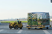 Israel, Ben-Gurion international Airport Trolleys transport cargo and baggage to aircraft