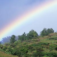 Hawaii, Molokai, rainbow